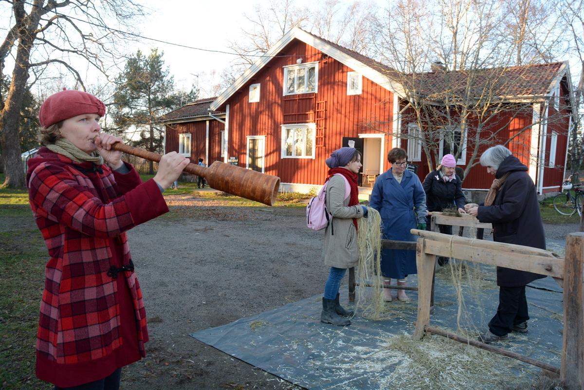 Hampun Viljely Suomessa